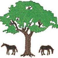 Acacia Farm