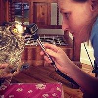 Vetcare Animal Clinic - George