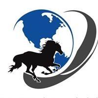 Equinetrans Global Horse Transport  Agnieszka Dziuba