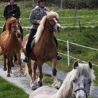 Helland hestesenter