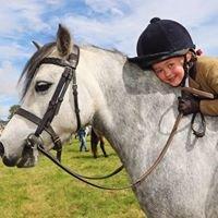 Free Spirit Equestrian, Bessbrook