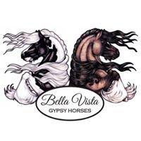 Bella Vista GypsyHorses