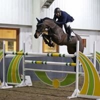 Competition Horses - Mark Williams