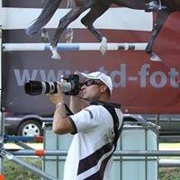 TD Foto & Video
