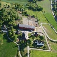 Revhaug Islandshest gård
