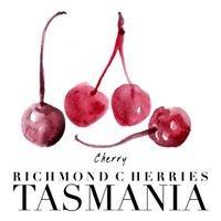 Richmond Cherries