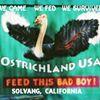 Ostrich Land USA Inc