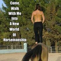 Tracy James Natural Horsemanship