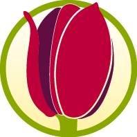 Tulip Supermarket