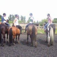 Mierscourt Valley Riding School