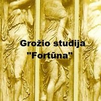 Grožio studija Fortūna