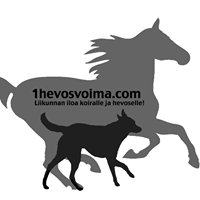1hevosvoima.com