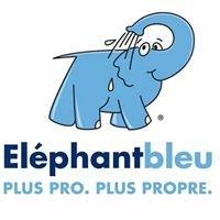 Eléphant Bleu Les Angles