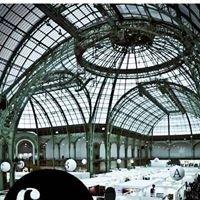 Saut Hermes - Grand Palais Paris