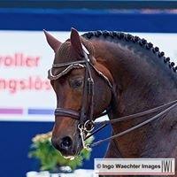Ingo Waechter Images