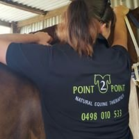 Point 2 Point Natural Equine Therapies