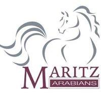 Maritz Arabians