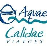 Aquae Calidae Viatges