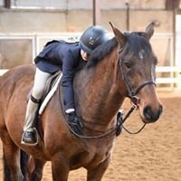 Stonewall Horse Shows