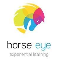 Horse Eye Leadership Seminars