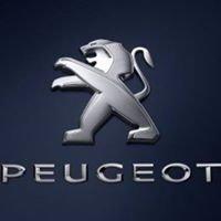 Auto Racing Service srl - Punto vendita e centro riparazione Peugeot Siena
