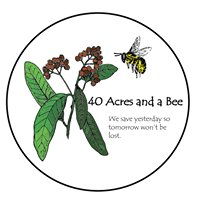 40 Acres and A Bee