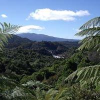 Rotorua guided tours