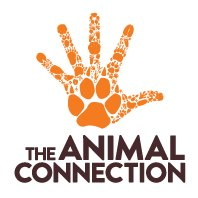 The Animal Connection NZ