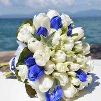 MB flowers