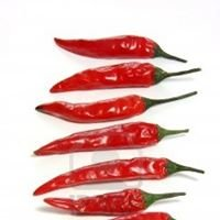 3rd Annual Chilli Festival at the Dorothy Clive Garden