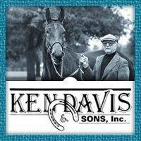 Ken Davis & Sons, Inc.