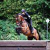 Richlands Sport Horses