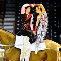 Kcm Vaultinghorses
