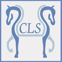 Cedar Lane Stable - Paso Fino Horses