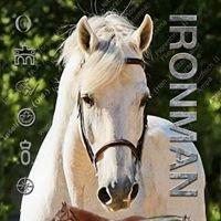 Ironworks Stallions