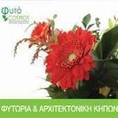 Fytocosmos