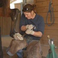 Equine Trigger Point Myotherapist & Structural Barefoot Trimmer