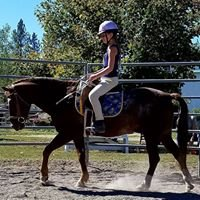 Mini Acres Trot-About Riding School