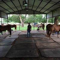 Five Star Horseshoeing School