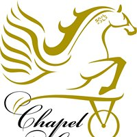 Chapel Lodge Standardbred Rescue & Rehabilitation