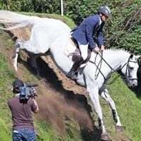 Maalwater - Showjumpers and Dressage horses