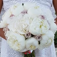 Annivia Flowers Wedding  Decorations,Gardens and Flower Shop