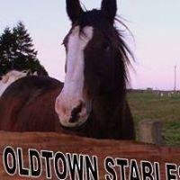 Oldtown Equestrian