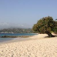 Just Grenada Group