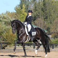 C & J Dierks Advanced Dressage Training Centre