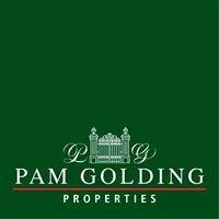 Pam Golding Properties Diamantveld NC