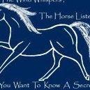 HorseWise: Holistic Horsemanship