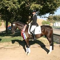 Sandy Savage Dressage