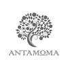 Εστιατόριο Αντάμωμα