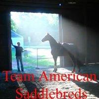 Team American Saddlebreds, Inc.